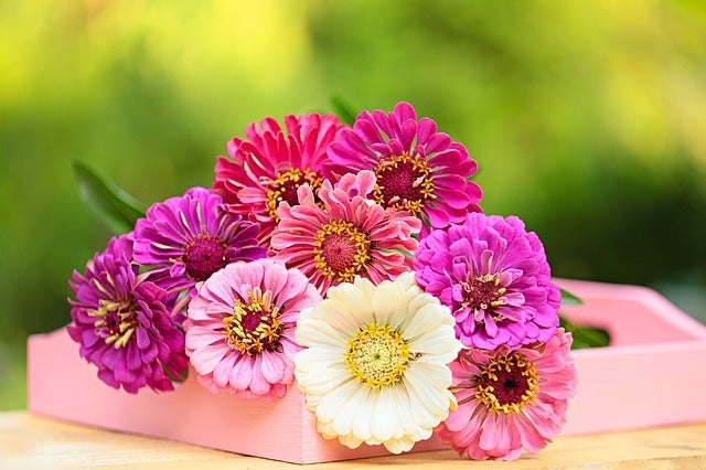 8 Most Popular Valentine S Day Flowers Sendflowers Com