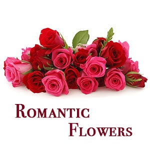 Flowers for all occasions love flowers and romantic flowers delivery
