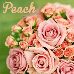 Colors of flowers and favorite floral colors peach flowers