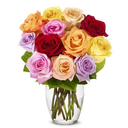 One dozen pastel rainbow roses