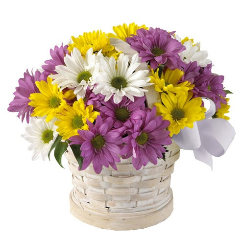 Purple daisies, yellow daisies and white daisies in a basket