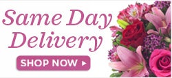 Send Flowers today with same day delivery for birthday, anniversary and get well flowers. Local florist arranged and hand delivered to a home, business or school to help celebrate today's special occasion.
