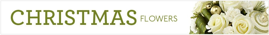 Christmas Floral Arrangements at Send Flowers