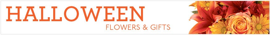 Halloween Flowers and Gifts at Send Flowers