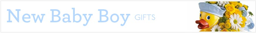 Baby Boy Gifts at Send Flowers