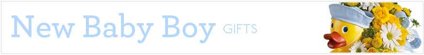Baby Boy Gift Basket at Send Flowers