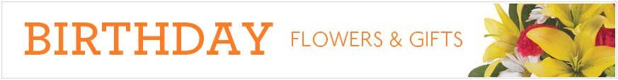 Happy Birthday Flowers at Send Flowers