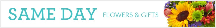 Same Day Flower Delivery at Send Flowers