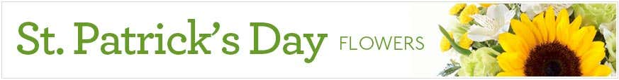 St. Patrick's Day Flowers at Send Flowers