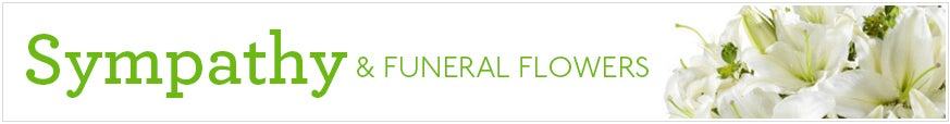 Sympathy & Funeral Flower Delivery at Send Flowers