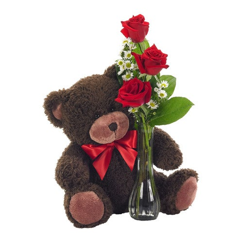 Long stem red roses delivered with a plush teddy bear
