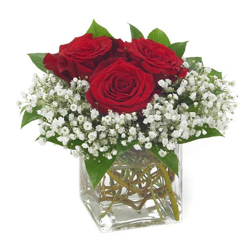 Three red roses in square vase with monte casino, cheap Valentine's roses
