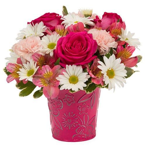 Pert Pink Rose Garden