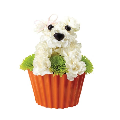 1 800 Flowers 174 Pup Cake In Bloom At Send Flowers