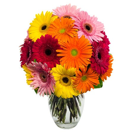 next day mixed gerbera daisy arrangement for next-day flower delivery online