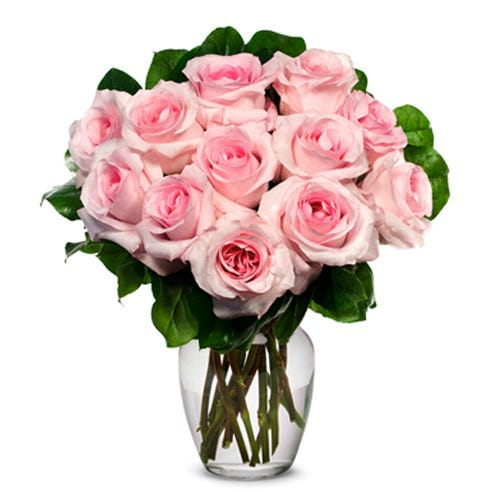 1 dozen pink roses in a box, send one dozen pink roses boxed with a card