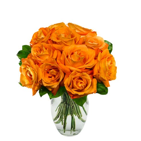 A dozen orange roses bouquet, orange rose bouquet delivery of discount flowers