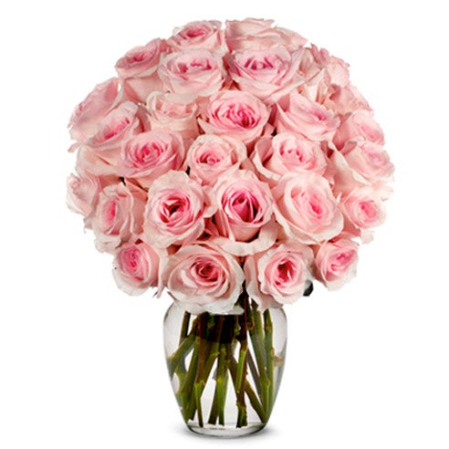 Light pink rose bouquet of cheap flowers and white alstroemeria