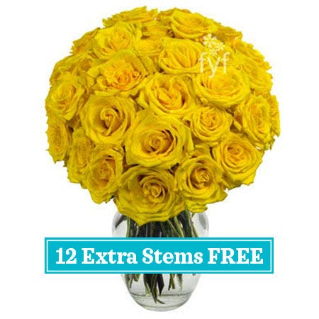 2 dozen long stem yellow roses in a box with a card, send 2 dozen yellow roses