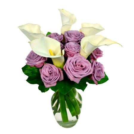 White calla lily delivery and white calla lily bouquet with purple roses