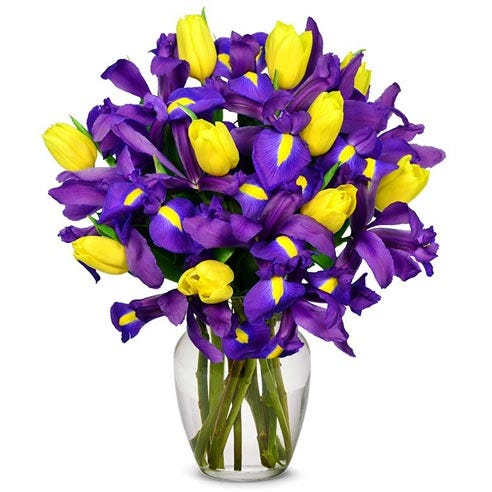 Yellow and purple iris bouquet, iris flower delivery with yellow tulips