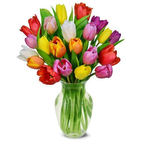 Rainbow tulips bouquet of cheap tulip flowers delivered in a box