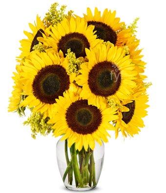 arrangement of sunflowers