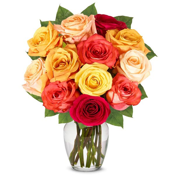One dozen fall roses with red roses, orange roses delivered in a box