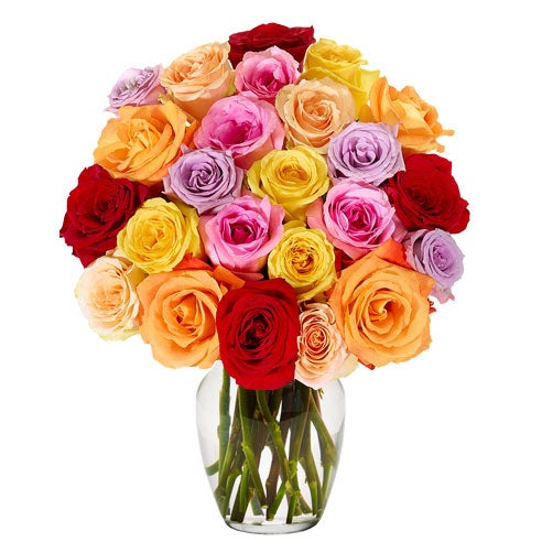 2 dozen long stem roses in a rainbow rose bouquet