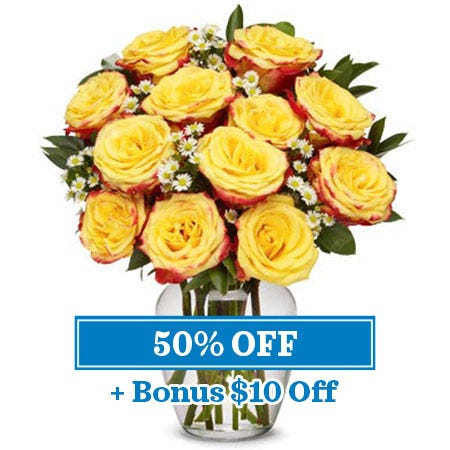 Boxed Fire roses, one dozen yellow and red roses in a box