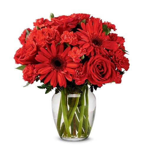 Red rose bouquet and red gerbera daisy delivery of red flowers for cheap flower delivery