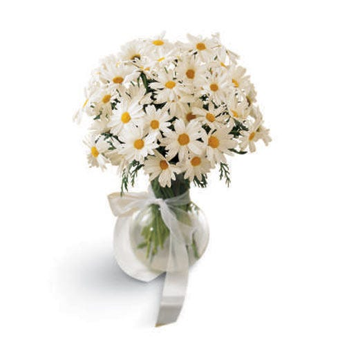 White daisies in a traditional white daisy bouquet with clear glass vase