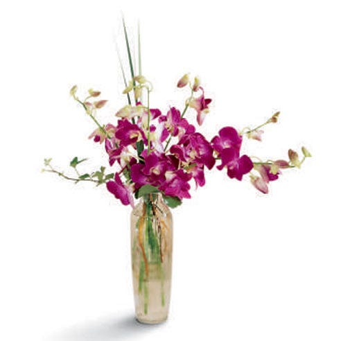 Long stem purple orchid bouquet with purple orchids in a fitted glass vase