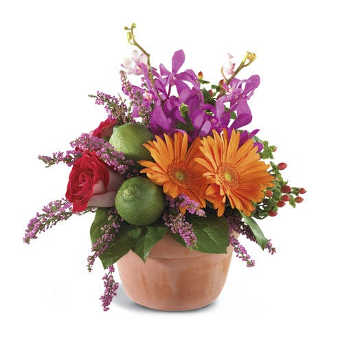 luxury orange gerbera daisy bouquet with clay pot, pink heather and limes