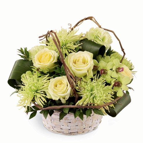 Pale green roses, green carnations, green dendrobium orchids and chrysanthemums