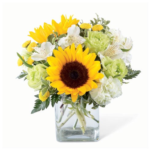 cheap sunflower bouquet delivery with large sunflowers and green carnations