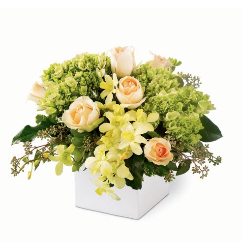 Green orchids in a green orchid bouquet with yellow orchids for cheap flower delivery