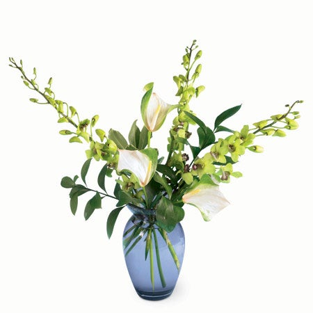 Green orchid delivery and green orchid centerpiece from sendflowers com