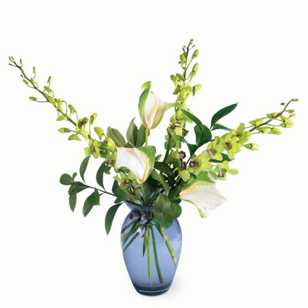 Mixed green orchid bouquet with green dendrobium orchids and green anthurium