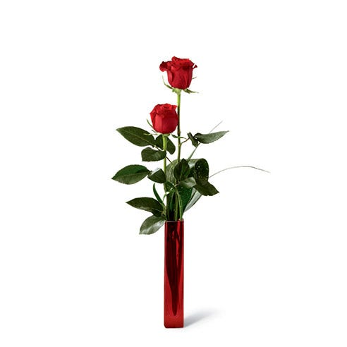 Single red rose bouquet with aspidistra leaf in tall slender red glass vase