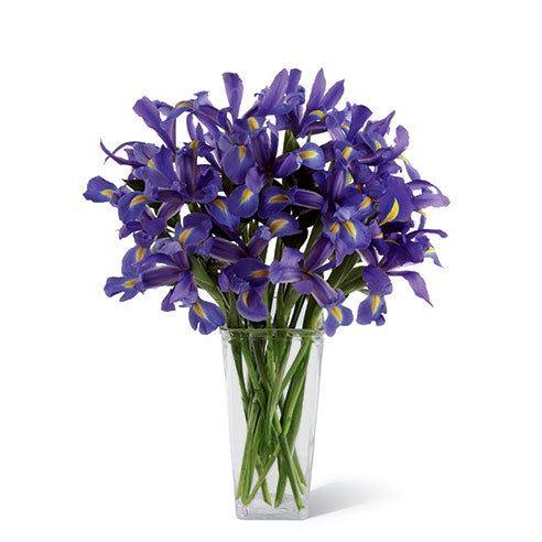 Blue iris bouquet in a clear glass square tower vase