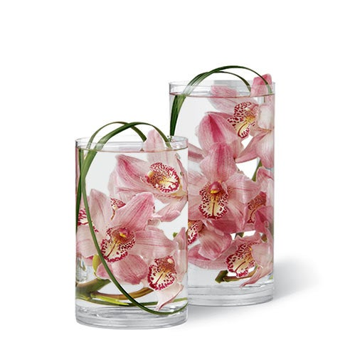 Two clear glass cylindrical vases filled with water hold lovely floating pink cymbidium orchid blooms