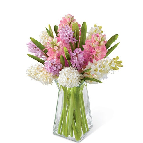 Pink, lavender, and white hyacinth stems in a clear gathered square glass vase