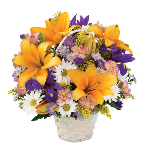 Orange lilies, purple iris, white daisies and pink carnations for delivery in a basket