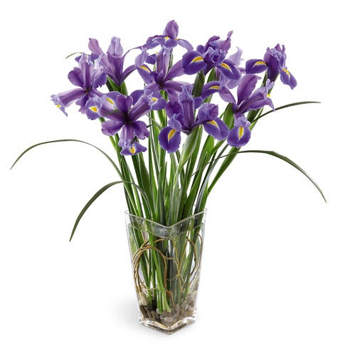 Stately Iris Bouquet
