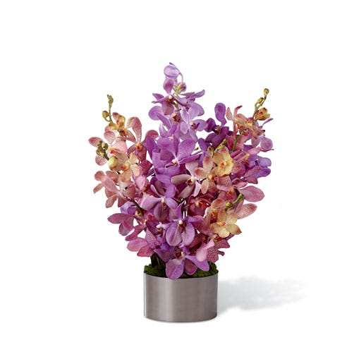 Pink and purple Mokara Orchids arranged in a graphite round container