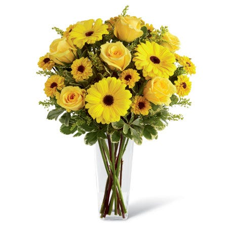 Yellow roses, gerbera daisies, Viking chrysanthemums, solidago, and greens in a clear glass square tapered vase