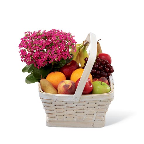 A hot pink kalanchoe plant in a large whitewash woodchip handled basket filled with an assortment of fruit