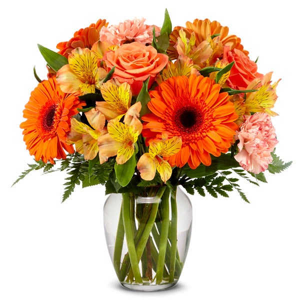 Orange gerbera daisy delivery and cheap orange flowers bouquet delivery today