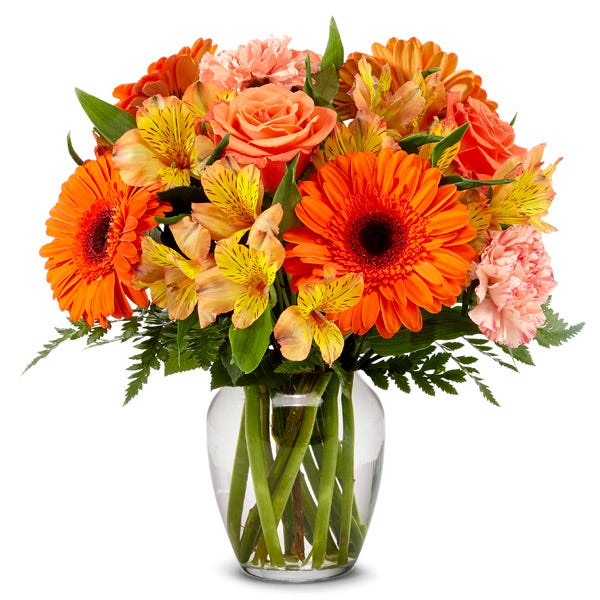 Orange gerbera daisy bouquet delivery